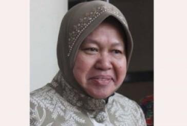 Cawali Tri Rismaharini Ditetapkan Tersangka. Penjegalan Hukum Berbau Politis ?