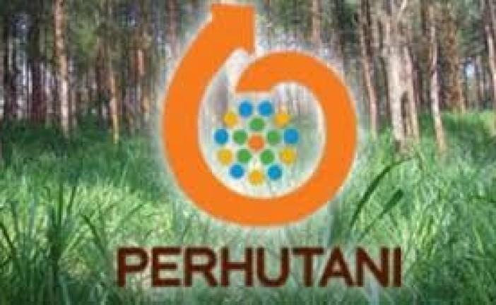 Perhutani Dilaporkan Caplok Perkebunan Rakyat