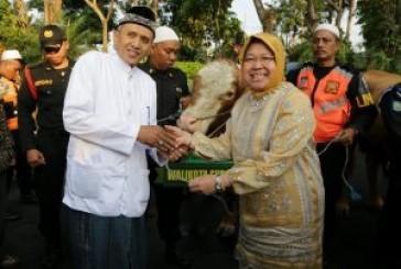 Selain Menyembelih 46 Hewan Kurban,  Pemkot Surabaya Kirim Bantuan Bagi Korban Gempa di Lombok, NTB