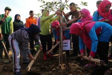 Pemkot Surabaya Bangun Hutan Kota Di Kelurahan Warugunung