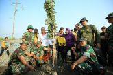 Kebun Raya Mangrove Pertama di Dunia, Ada Di Surabaya