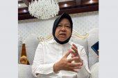 """Pemkot Surabaya Buka Formasi CPNS. Wali Kota : """"Terbanyak Guru !"""""""