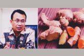 Aksi Borong Empon – Empon Demi Menangkal Virus Corona… Tidak Perlu !